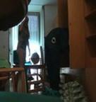 imagen Rubia se tira a un policia, escena casera XXX
