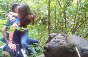 imagen Joven pareja tiene sexo en la selva del Amazonas