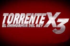 imagen Torrente X El Chihuahua del Rey (peli porno en español)